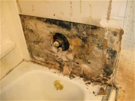 bathroom mildew removal gta mold removal residential mold remediation