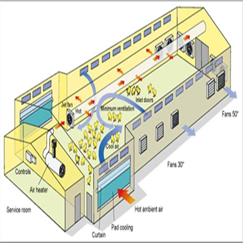 broiler hatchery layout broiler farm design www pixshark com images galleries