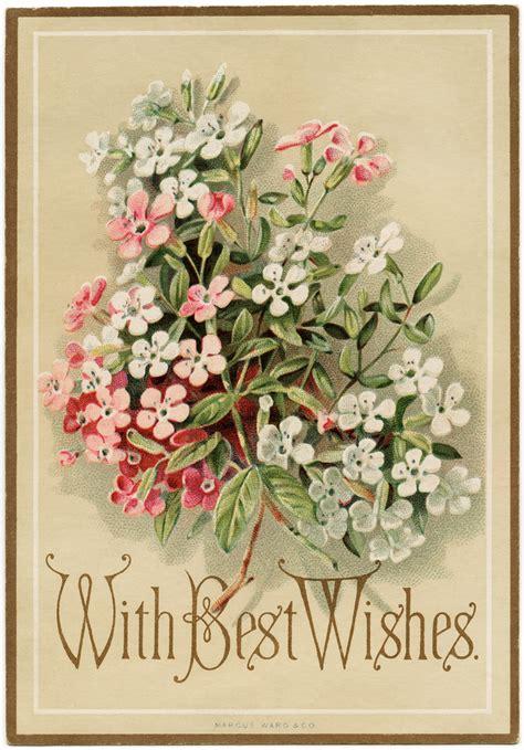 cards antique ward co floral greeting card design shop