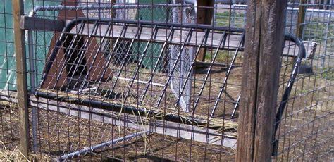 hay racks for goats another simple repurpose job made quick work out of a broken futon frame i found near a trash