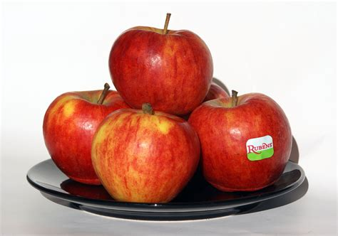 App L by An Apple A Day Apples