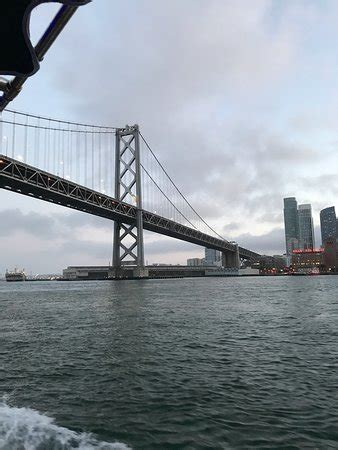 boat tours from san francisco san francisco bay boat cruises wine tasting on the bay
