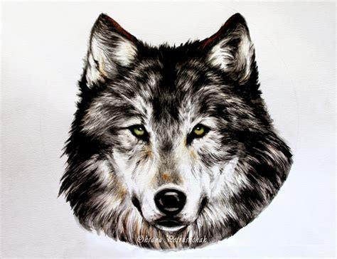 imagenes en blanco y negro de lobos oksana petrushchak illustrations lobo pla 231 a de pi