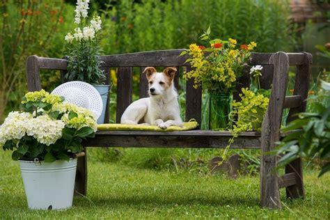 Imagenes De Jardines Con Animales | jardines para casas con mascotas bricolaje10 com