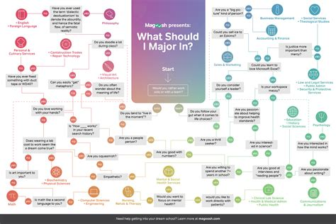 what should i major in magoosh high school
