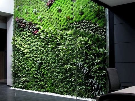 vertical indoor garden spain s largest vertical garden cleans air inside office