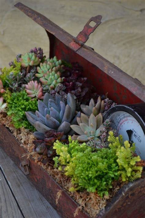 Creative Container Gardening Ideas 39 Best Creative Garden Container Ideas And Designs For 2017