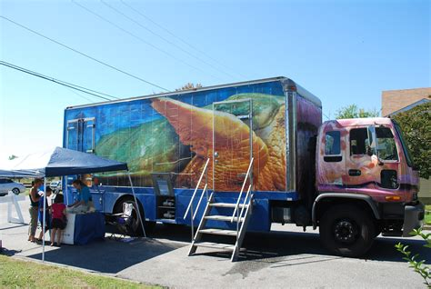 Termurah Mobil Truck Aquarium celebrating the great fall migration the eastern shore of virginia s annual birding festival