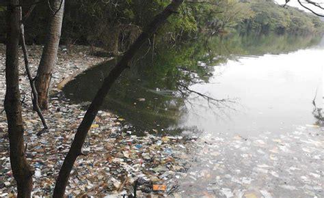 archivo febrero de 2014 grandes empresas siguen contaminando m 225 s el medio ambiente