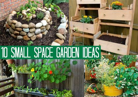 1o small space garden ideas oh my creative