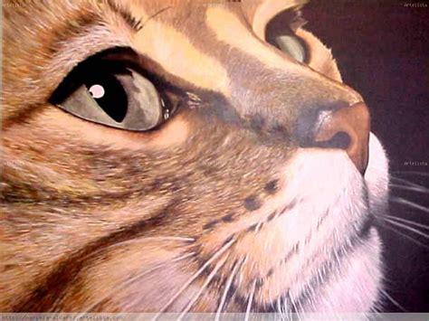 imagenes artisticas de gatos gato mariela alvarez artelista com