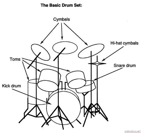 tutorial drum basic top 27 ideas about hit like a girl on pinterest tom toms