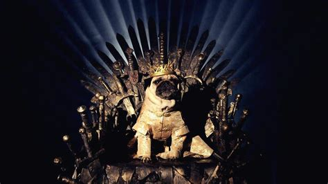 pug of thrones casal recria of thrones seus pugs leoelu
