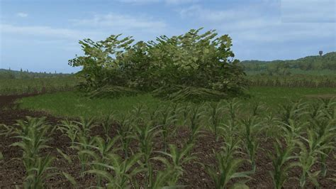 placeable big bush v 1 0 0 0 for fs17 farming simulator