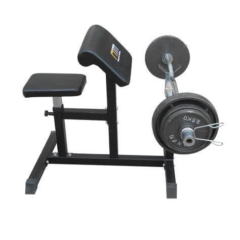 seated bench seated preacher curl bench online sportitude
