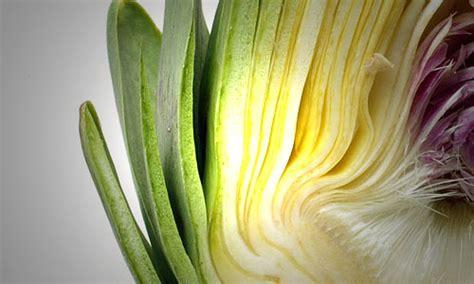 fiore carciofo eliminare le tossine e depurare il fegato con il carciofo