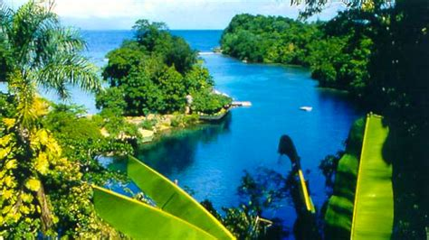 Jamaican Finder Jamaica Vacation Packages Find Cheap Vacations To Jamaica Great Deals On Trips