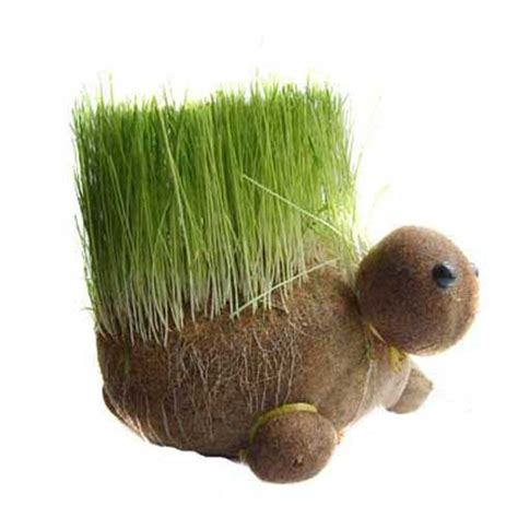 garden grow socks 1000 images about sokpoppen on sock animals