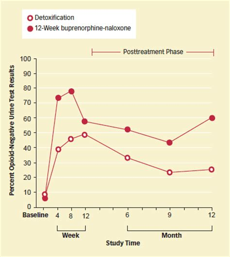 Detox Cleanse For Buprenorphine And Naloxone by Opioid Abusers Benefit From Extended Buprenorphine