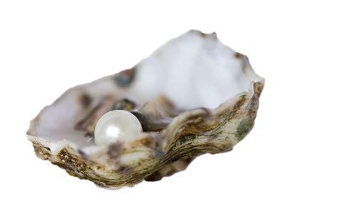 Brautschmuck Ohrringe Perlen by Brautschmuck Set Lilli Perlenkette Und Ohrringe