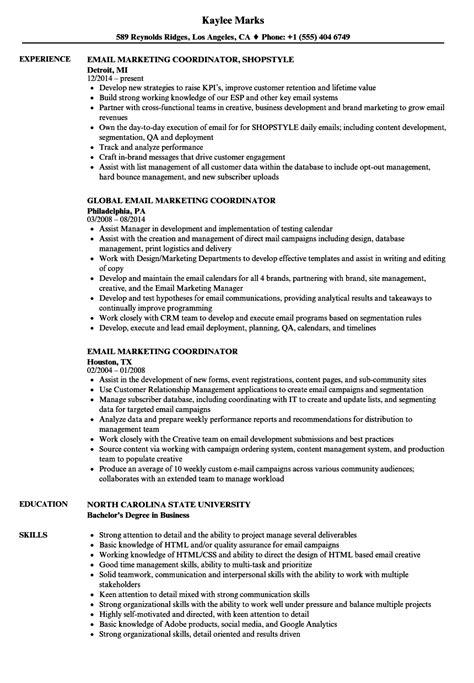 sales marketing coordinator resume samples velvet jobs