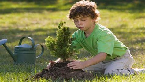 imagenes niños sembrando imagenes de ni 241 os plantando arboles imagui