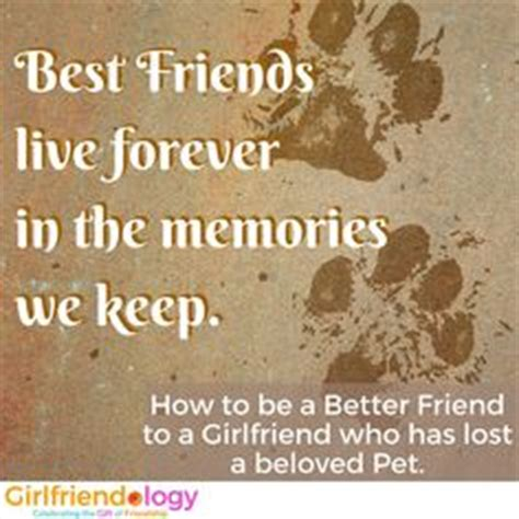 how to be a better person 400 simple ways to make a difference in yourself and the world books fab friends on dogs diy treats and cats