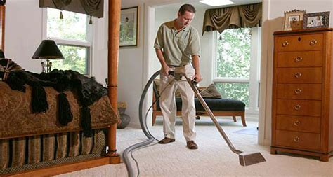 cleaning rugs at home green summer what to do at home