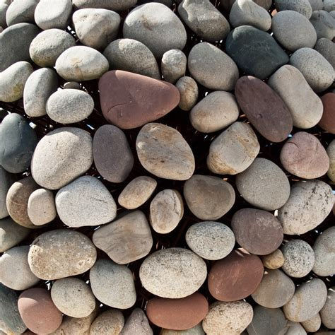 with stones soup the of idealism