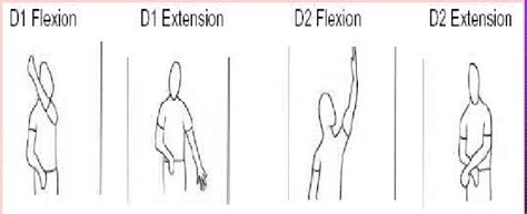 pattern extension activities physical therapy management of supraspinatus tendinitis