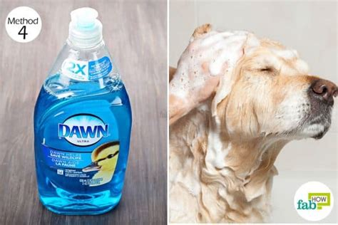dish soap for dogs 17 ways to use dish soap for cleaning pest and more fab how