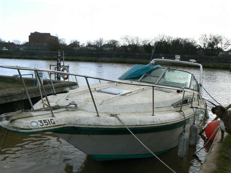 boat insurance without a survey sea ray 290 sinking galvanic action expert witness