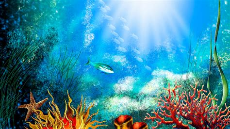 live wallpaper for pc aquarium aquarium hd wallpaper aquarium wallpaper amazing wallpapers