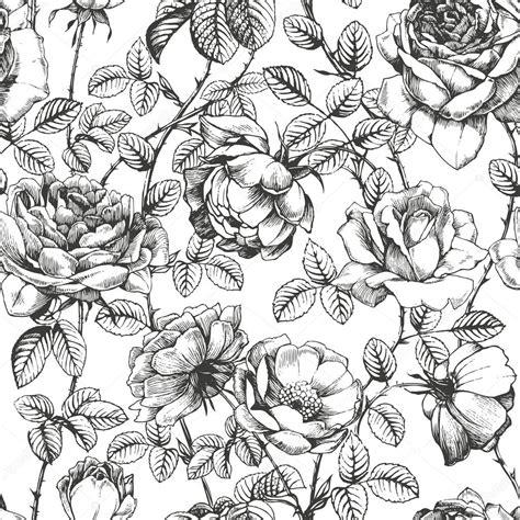 pattern drawing rose rose pattern white stock vector 169 shlapak liliya 13947768