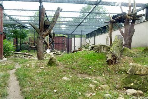 Zoologischer Garten Warschau by Warschau Pl Zoo Orchifant Botanische Und Zoologische