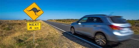 Ctp Car Insurance by Ctp Insurance In Tasmania Canstar