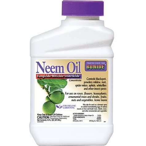 neem oil for bed bugs this organic multi purpose pest control is derived from