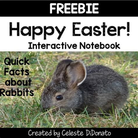 happy hoppy easter flip a flap handled board book books the education highway springing into learning hop