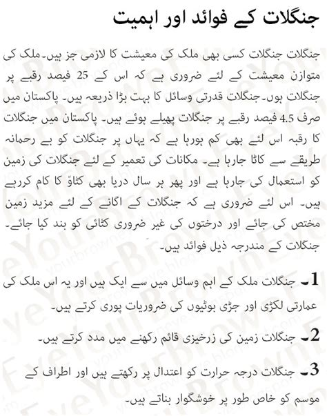 einstein biography in hindi pdf sports essay in urdu power point help custom writing