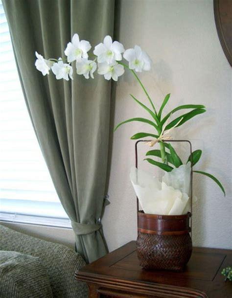 orchideen im schlafzimmer dekoration mit orchideen 14 exklusive erfrischende ideen