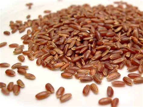 cucinare il riso rosso riso rosso selvaggio o selvatico cos 232 e come si cucina