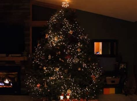 christmas tree lights that play music father decorates christmas tree with lights moments later
