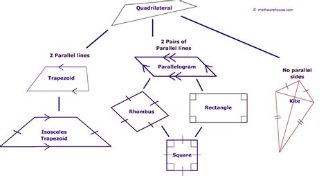 quadrilaterals flowchart classifying quadrilaterals geometric figures