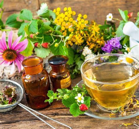 corso fiori di bach on line cure naturali