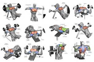 chest bench workout 5 tips for the best chest workout all bodybuilding