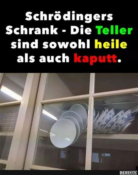 Schrank Lustig by Best 25 Facts Ideas On Facts