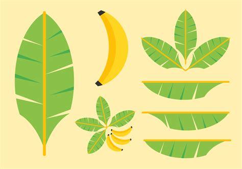 free clipart vector banana leaf clip cliparts