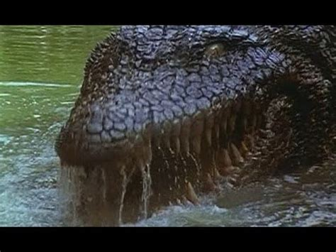 The Crocodile 2 killer crocodile 2 a corner store review veda 5