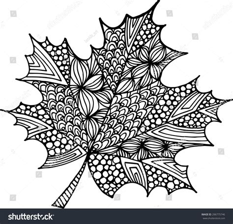 doodle draw vector maple leaf illustration stock vector