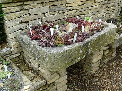 Hypertufa Trough Made Some Small Planters Using Who Made Rock Garden